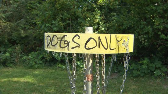 Dogs only